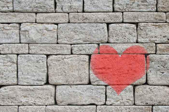 Herzmauer Emotion Code Emotionscode Energiearbeit bei Tieren Tiere energetisch heilen