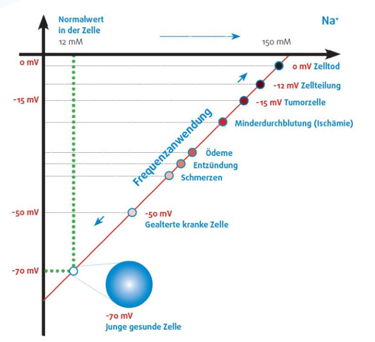 Healy Frequenztherapie Frequenzen Tier Tiere Zellmembranspannung Zellen Selbstheilungskräfte Gesundheit